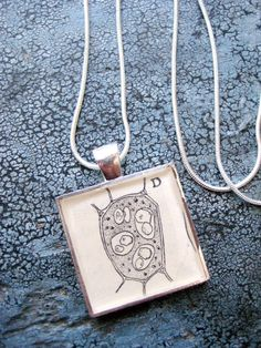 Vintage chemistry text illustration distillation florence flask wood cell vintage botanytext book illustration square resin silver plated pendant with silver chain by leftbrainrightbrain aloadofball Gallery
