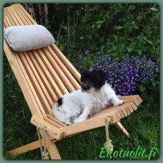 EcoChair and our little JRT Nanni. Scandinavian Outdoor Furniture, Backyard, Kentucky, Wood, Outdoor Decor, Design, Home Decor, Ideas, Chair
