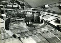 Luchtfoto Ruine van Teylingen 1952
