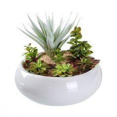 Maceta blanca ovalada con cactus