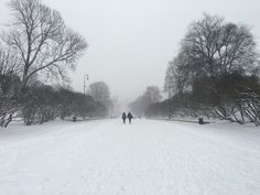 https://flic.kr/p/CKmcNx | Winter in Oslo  Photographed without enhancements
