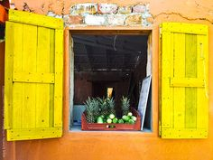 Brightly colored window with tropical fruits on the ledge by anya brewley schultheiss for Stocksy United