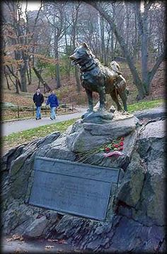 "About the statue of Balto in NYC's Central Park.  To go with ""The Bravest Dog Ever""."