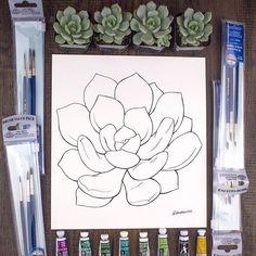 Succulent   Line Art by Becca Stevens   @freedomrise   freeodmriseusa.com
