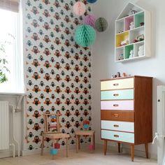 house shelf..