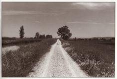 Hamish Fulton -América-Orange artista multidisciplinar que realiza LANDART (Arte efímero hecho en la tierra)  Su trabajo es caminar con me´taforas de la vida, recorre caminos reflexionando y mostrando pequeños objetos de referencia.Su propia historia contada a través del camino. Profundidad de campo larga, suele poner siempre en sus fotografías expuestas las coordenadas exactas de los lugares que visita