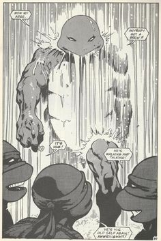 TMNT Entity: TMNT (Vol. 1) #26
