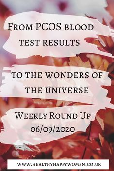 This week we look at pcos blood test results, the incredible power or the universe and what we've been up to despite not being in Tunisia. Go on, head over to the blog and give it a read, I know you want to 😉