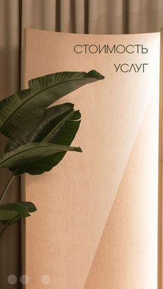 Girly M Instagram, Instagram Brows, Instagram Feed, Instagram Story, Flower Background Wallpaper, Flower Phone Wallpaper, Flower Backgrounds, Mircoblading Eyebrows, Artificial Palm Leaves
