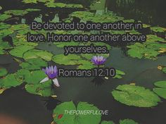 Be devoted to one another in love. Honor one another above yourselves.  Romans 12:10  #love #instagood #tbt #beautiful #photooftheday #instadaily #peoplecreatives #quotesoftheday #quotes #alkitab #bible #biblequotes #bibleverse #l4l #instacool #positive #positivevibes  #positivethinking #jesus #motivasi #motivationalquotes #motivation #inspiration #inspiring #inspirasi #inspirationalquotes  #bestoftheday  #pinterest #IFTTT #IFTTT