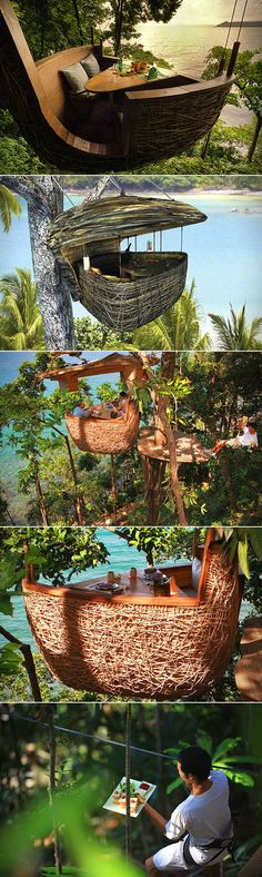 Now live your childhood Jungle Book dreams at the Soneva Kiri resort in…
