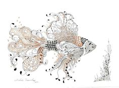 A Tangled Fish by Shelly Beauch