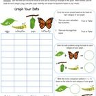 Butterfly Life Cycle Graphing Worksheet - This product includes 1 butterfly life cycle graphing worksheet and 1 butterfly life cycle spinner wheel....