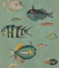 Poissons by Mind the Gap - Green - Mural : Wallpaper Direct Fish Wallpaper, Wallpaper Direct, Green Wallpaper, Wallpaper Panels, Wallpaper Samples, Pattern Wallpaper, Wallpaper Online, Amazing Wallpaper, Wallpaper Decor