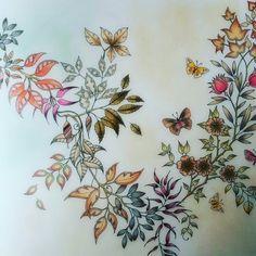 Secret Garden Coloured by #zsuzsiko https://www.instagram.com/zsuzsicolouring/