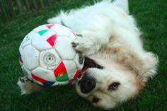 just love my soccer ball!