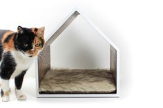 Pampered Pets: 9 Incredibly Cool Dog Dens & Cat Caves