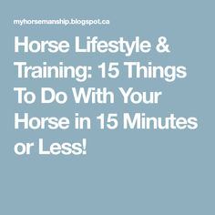 Horse Lifestyle & Training: 15 Things To Do With Your Horse in 15 Minutes or Less!