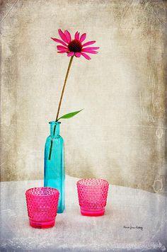 """The Coneflower"" by Randi Grace Nilsberg"