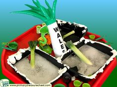 Wales - Saint David's Day - Dydd Santes Dwynwen – Leeks - Cawl Themed Water Multi-sensory Mouldable Soap - Vegetables Tuff Tray Ideas and Activities Multi Sensory, Sensory Play, Welsh Gifts, Saint David's Day, Tuff Spot, Tuff Tray, Water Activities, Eyfs, Role Play