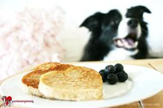DIY Dog Valentine's Day, diy dog pancakes, dog pancakes, pancakes, pet, valentines day, sweet, friendly, pet, pooch, yummy, recipe, do it yourself, doggy pancakes, pup-pancakes