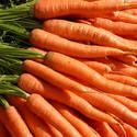 """To store freshly harvested carrots, twist off the tops, scrub off the dirt under cold running water, let dry and seal in airtight plastic bags, and refrigerate. If you simply put fresh carrots in the refrigerator, they'll go limp in a few hours.    I didn't know this, no wonder I often have limp """"fresh"""" carrots!"""