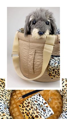 Small Dog Carrier Purse, Dog Carrier Bag, Designer Dog Carriers, Pet Carriers, Dog Supplies, Dog Bed, Small Dogs, Dog Lovers, Pet Products