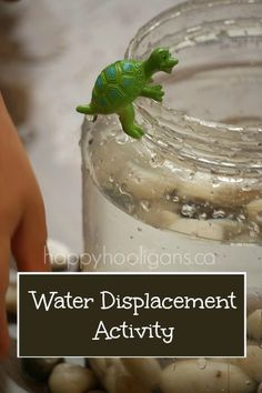 water displacement activity - a fun and easy science experiment for kids - happy hooligans