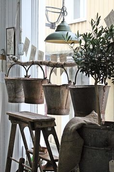 Display buckets from hanging branch - could use this idea for watering cans.