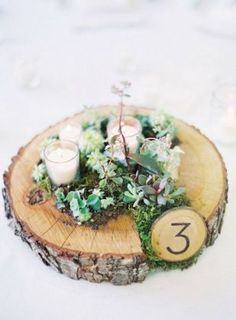 succulent moss and votive wedding centerpiece