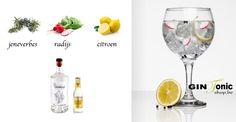 BLOG - Haymans Old Tom Gin Recept