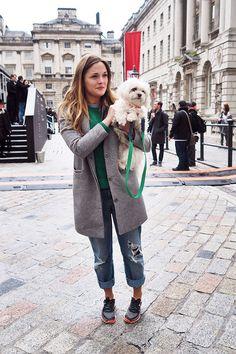 grey coat + maltese terrier #LFW