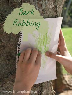 On a recent nature walk with our co-op, I asked the kids to find a tree with which they were not familiar and explore it by touching and feeling it. I suggested they could do leaf rubbings or bark rubbings. They had all heard of leaf rubbings and most had done them; but they were […]