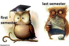 First and last semester