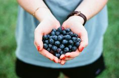 Satisfying food cravings can bring on a migraine attack, or make one worse. These healthy snack options can satisfy cravings without hurting your health. Blueberry Season, Blueberry Jam, Blueberry Picking, Blueberry Recipes, Jam Recipes, Whole Food Recipes, Vegan Recipes, Snacks Recipes, Whole Foods