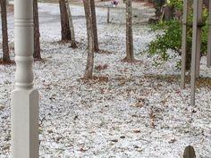 Hail 3 miles south of warren Lake Hyatt estates. By Shandola Langham