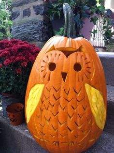 Owl-o-Lantern! I'm doing this! I get one of the four or five pumpkins every year. This pattern is mine