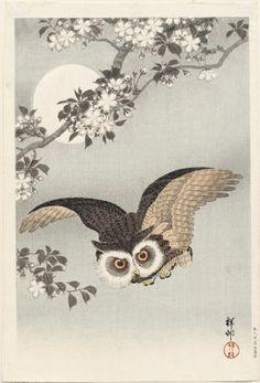 Scops Owl, Cherry Blossoms, and Moon | Artist Ohara Koson, Japanese, 1878–1945