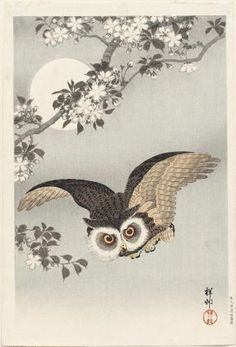 Scops Owl, Cherry Blossoms, and Moon |      Artist Ohara Koson, Japanese, 1878–1945