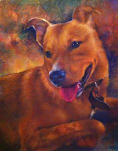 Callie was a portrait painted for my son of his dog as a Christmas gift. Christmas Gifts, Portrait, Dogs, Animals, Xmas Gifts, Christmas Presents, Animales, Headshot Photography, Animaux