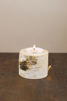 Tree Branch Candle Holder Birch 2in
