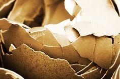 Zázrak pro zuby: Pasta z vaječných skořápek