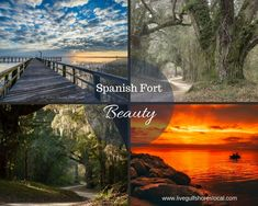 Moving to Spanish Fort Spanish Fort Al, Outdoor Activities, Real Estate, Beautiful, Real Estates, Field Day Activities