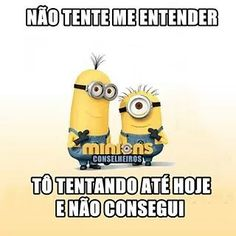Eu kkkk Funny Animal Pictures, Funny Animals, Minions Images, My Bible, Weird World, Comedy, Funny Memes, Lol, Thoughts