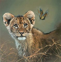 Lion cub with butterfly - Animal Illustrations by Fabrizio Caforio