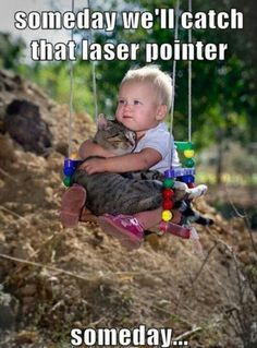 The 20 Funniest Pictures of Babies With Cats! Lol - Funny Baby - The 20 Funniest Pictures of Babies With Cats! Lol The post The 20 Funniest Pictures of Babies With Cats! Lol appeared first on Gag Dad. Crazy Cat Lady, Crazy Cats, Cute Kids, Cute Babies, Baby Animals, Funny Animals, Adorable Animals, Cute Animals With Funny Captions, Funniest Animals