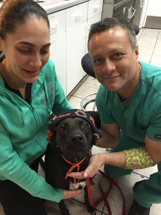 Because a dog named Bear should really be cheering for Chicago! #DrKupkee #SabalChaseVet  http://sabalchaseanimalclinic.com/home.html Follow us on #Facebook #Twitter and GooglePlus!