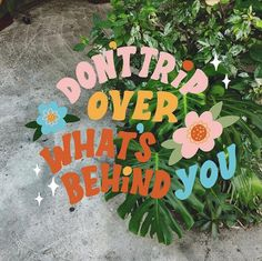 """""""Don't trip over what's behind you."""" Love the colorful, retro type and photo overlay combo. Photo Wall Collage, Picture Wall, Collage Art, Pretty Words, Cool Words, Plakat Design, Happy Words, Poster Wall, Quote Aesthetic"""
