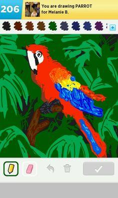 parrot - draw something