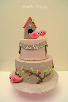 Birthday cake, bird house